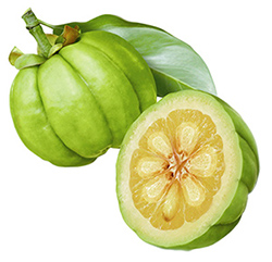 Lose weight the easy way with Garcinia Cambogia slimming pills