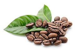 Green Coffee Bean capsules to aid slimming and weight management