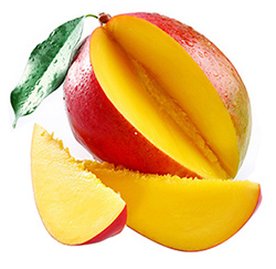 African Mango Weight Loss Supplement